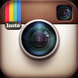 500 Instagram Followers per day