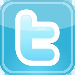 100 Twitter Followers per day